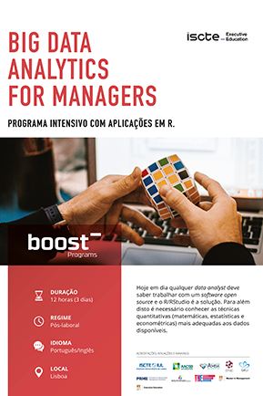 big data analytics for managers mini brochura